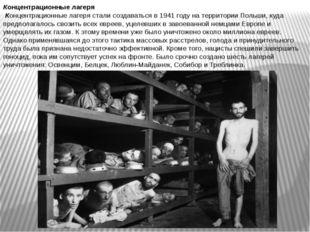 Концентрационные лагеря Концентрационные лагеря стали создаваться в 1941 году
