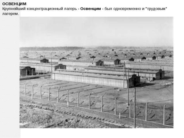 """ОСВЕНЦИМ Крупнейший концентрационный лагерь - Освенцим - был одновременно и """"..."""