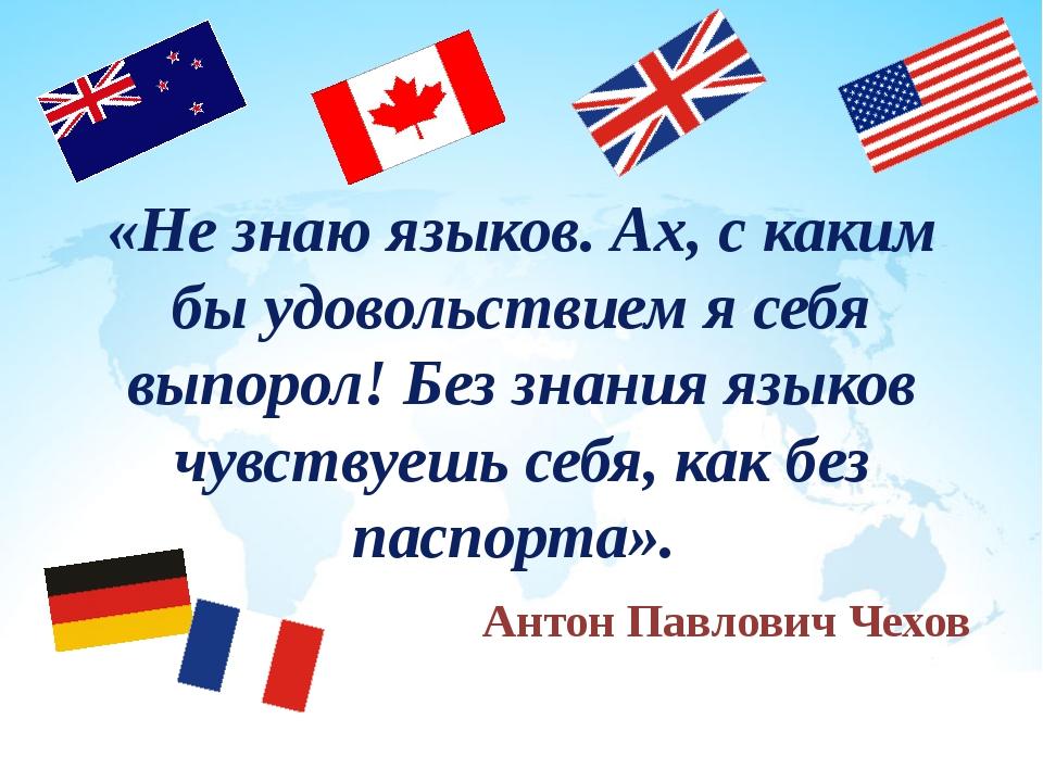 «Не знаю языков. Ах, с каким бы удовольствием я себя выпорол! Без знания язык...