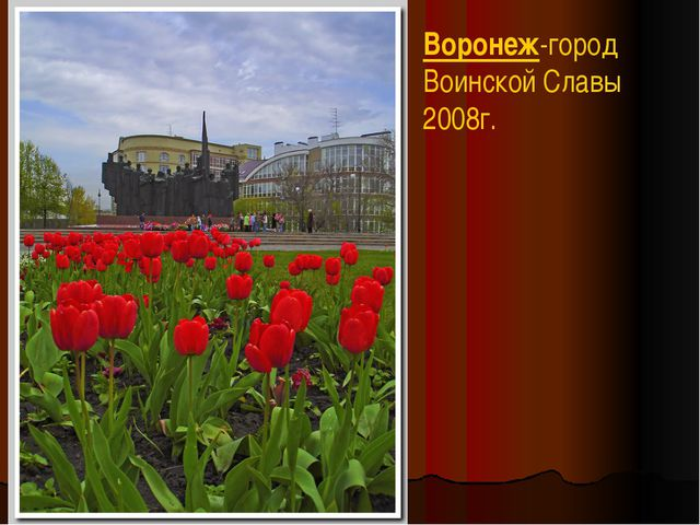 Воронеж-город Воинской Славы 2008г.