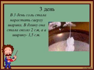 3 день В 3 день соль стала нарастать сверху шарика. В длину она стала около 2