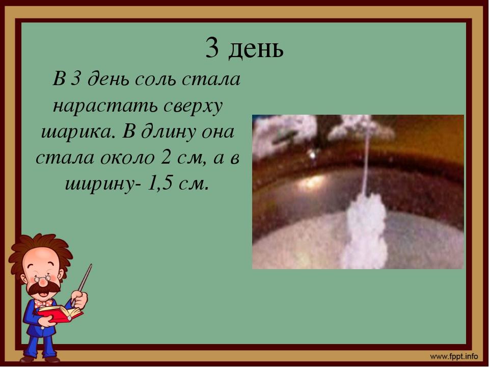 3 день В 3 день соль стала нарастать сверху шарика. В длину она стала около 2...
