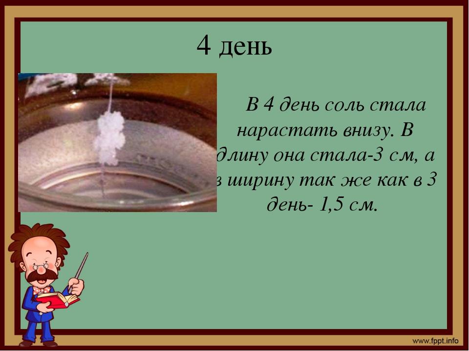 4 день В 4 день соль стала нарастать внизу. В длину она стала-3 см, а в ширин...