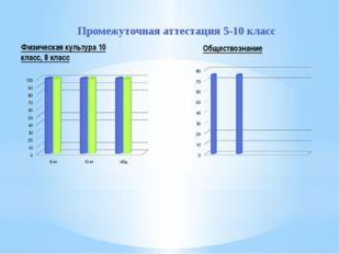 Промежуточная аттестация 5-10 класс Физическая культура 10 класс, 8 класс Общ
