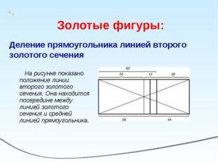 На рисунке показано положение линии второго золотого сечения. Она находится