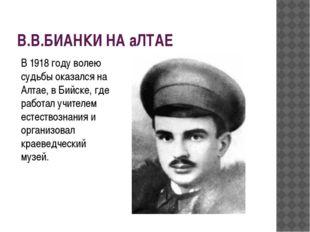 В.В.БИАНКИ НА аЛТАЕ В 1918 году волею судьбы оказался на Алтае, в Бийске, где