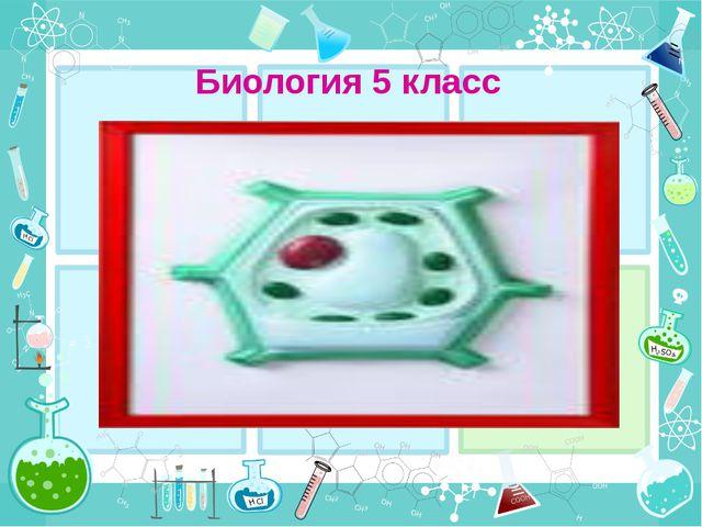 Биология 5 класс