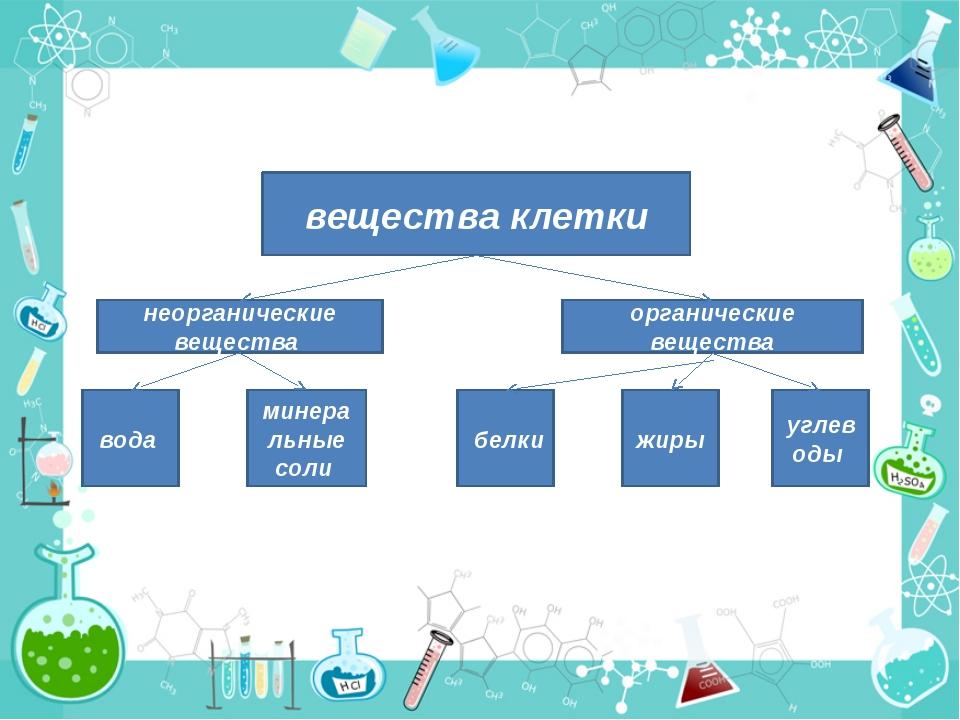 вещества клетки неорганические вещества органические вещества вода минеральн...