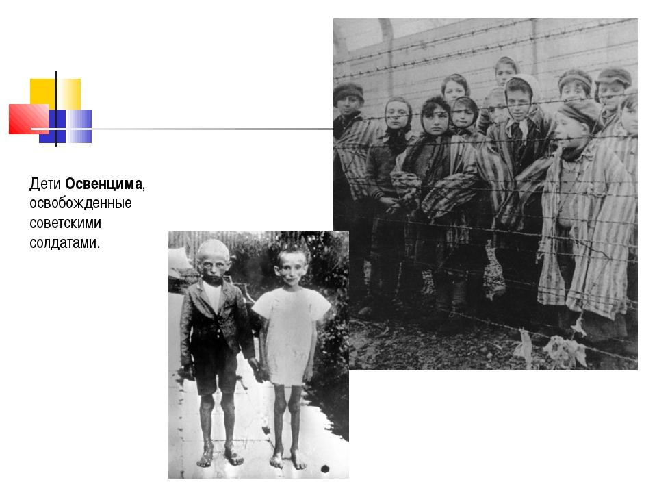 Дети Освенцима, освобожденные советскими солдатами.