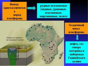 Выход кристаллических пород платформы рудные ископаемые (медные, урановые, пл