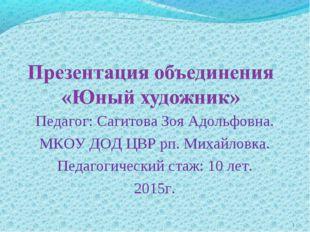 Педагог: Сагитова Зоя Адольфовна. МКОУ ДОД ЦВР рп. Михайловка. Педагогический