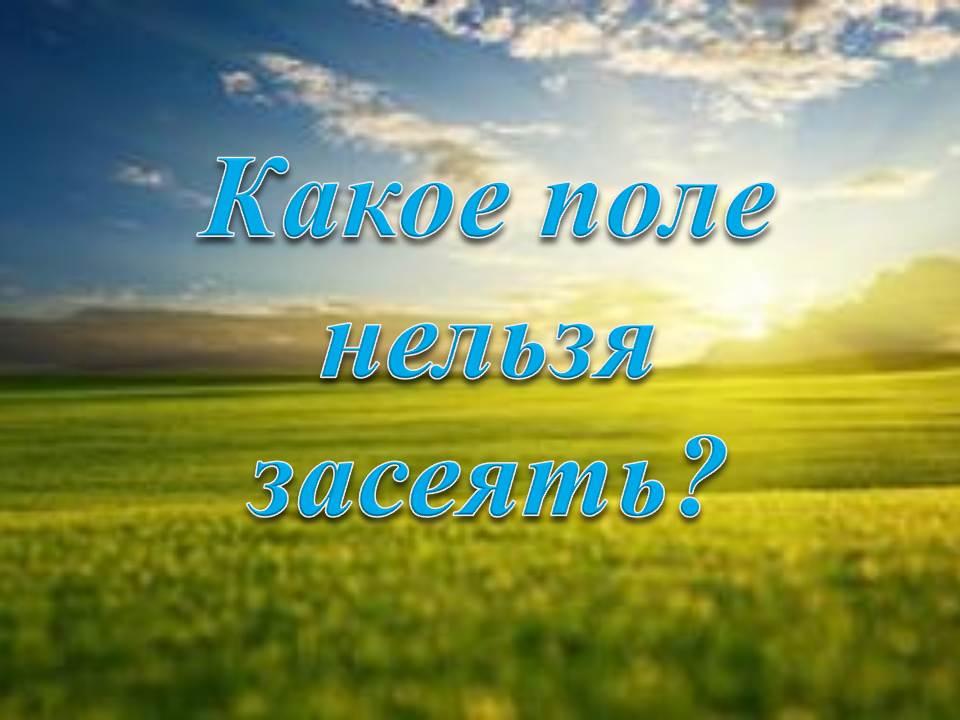 hello_html_m49b040a2.jpg