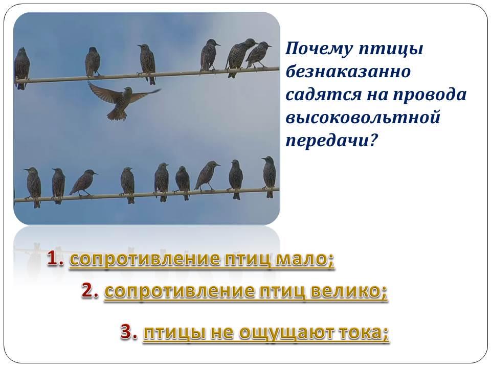 hello_html_m58826254.jpg