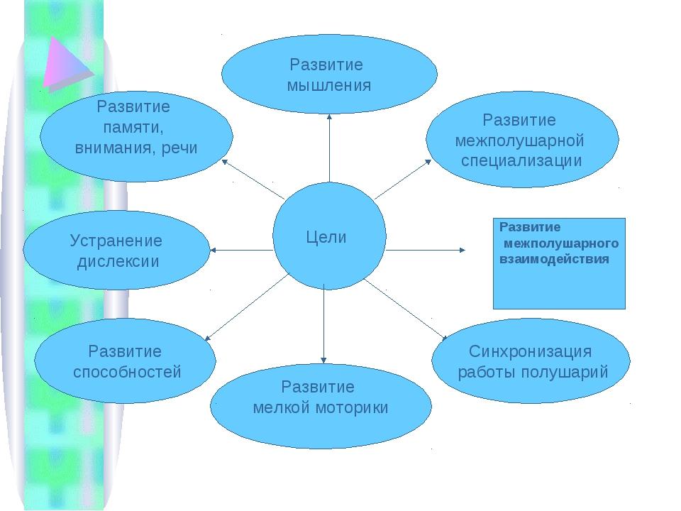 Цели Развитие межполушарной специализации Развитие межполушарного взаимодейс...