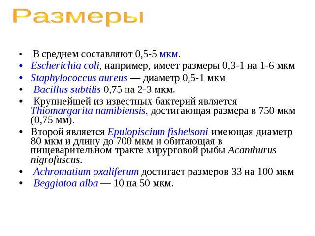 В среднем составляют 0,5-5 мкм. Escherichia coli, например, имеет размеры 0,...