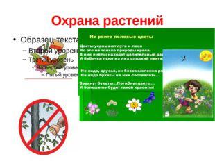 Охрана растений