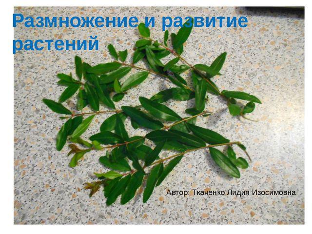 Размножение и развитие растений Автор: Ткаченко Лидия Изосимовна