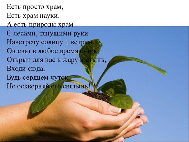 Есть просто храм, Есть храм науки. А есть природы храм – С лесами, тянущими р...