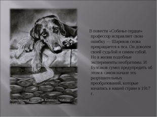 В повести «Собачье сердце» профессор исправляет свою ошибку — Шариков снова