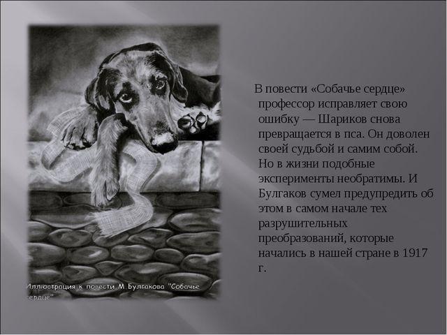 В повести «Собачье сердце» профессор исправляет свою ошибку — Шариков снова...