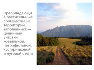 . Преобладающие растительные сообщества на территории заповедника — целинные
