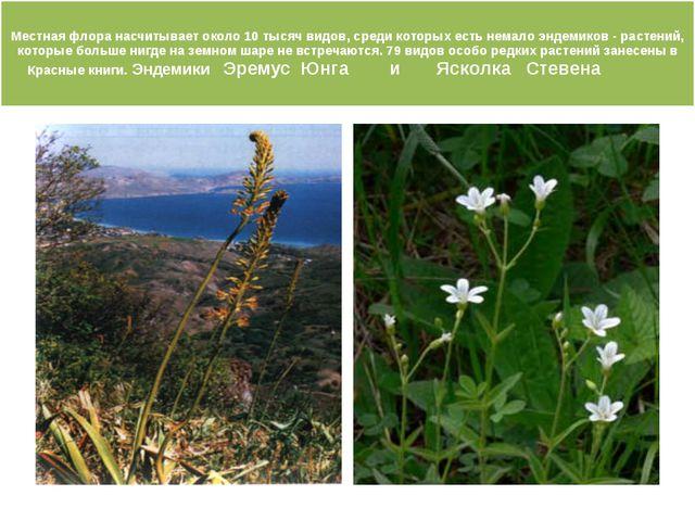 Местная флора насчитывает около 10 тысяч видов, среди которых есть немало эн...