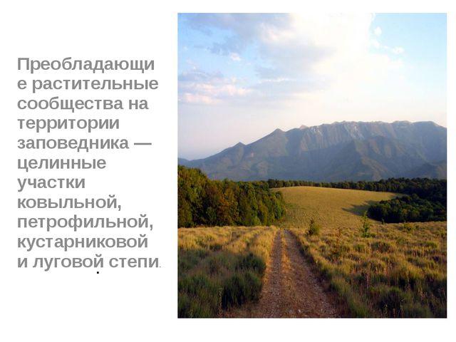 . Преобладающие растительные сообщества на территории заповедника — целинные...