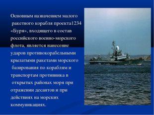 Основным назначением малого ракетного корабля проекта1234 «Буря», входящего в