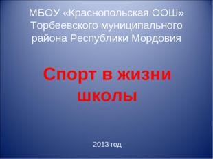 МБОУ «Краснопольская ООШ» Торбеевского муниципального района Республики Мордо