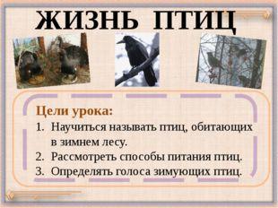 ЖИЗНЬ ПТИЦ Научиться называть птиц, обитающих в зимнем лесу. 2. Рассмотреть с