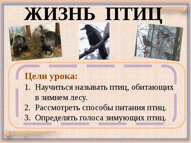ЖИЗНЬ ПТИЦ Научиться называть птиц, обитающих в зимнем лесу. 2. Рассмотреть с...