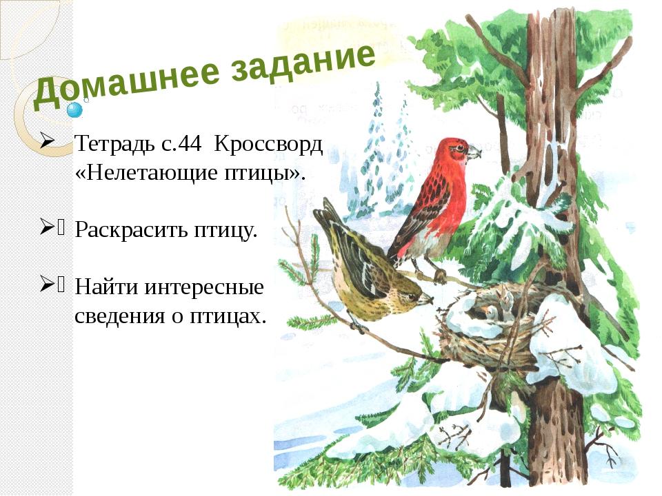 Домашнее задание Тетрадь с.44 Кроссворд «Нелетающие птицы». Раскрасить птицу....