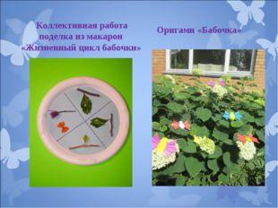 Оригами «Бабочка» Коллективная работа поделка из макарон «Жизненный цикл баб