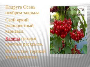 Подруга Осень ноябрем закрыла Свой яркий разноцветный карнавал. Калина грозд