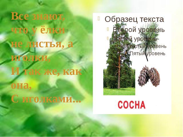 Все знают, что у ёлки не листья, а иголки, И так же, как она, С иголками...