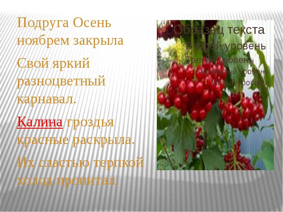 Подруга Осень ноябрем закрыла Свой яркий разноцветный карнавал. Калина грозд...