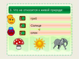 - + - гриб Солнце слон 3. Что не относится к живой природе: 3 1 2
