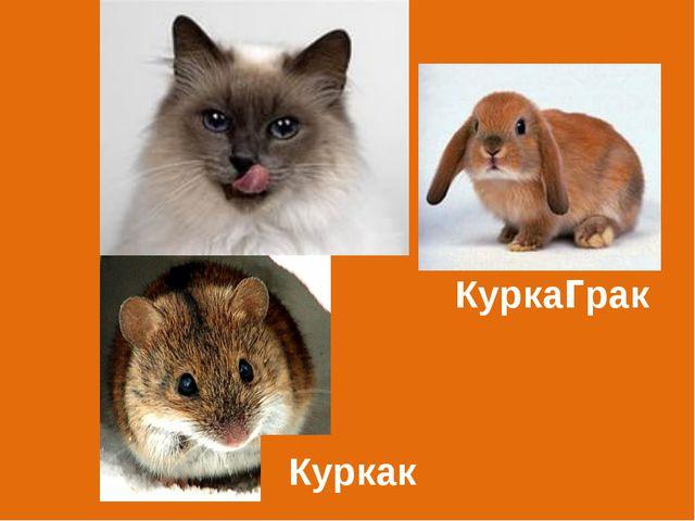 Куркак Куркаграк