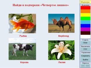 Найди и подчеркни «Четвертое лишнее» Рыбка Верблюд Корова Лилия
