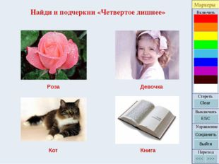 Найди и подчеркни «Четвертое лишнее» Роза Девочка Кот Книга