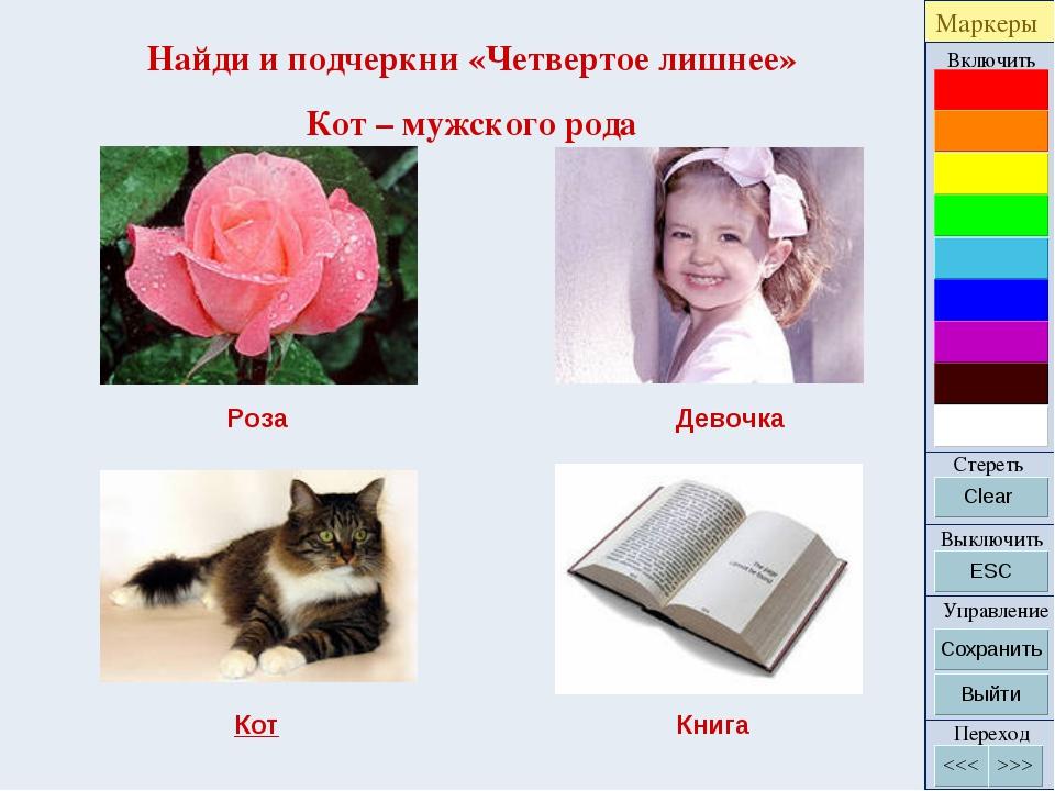 Найди и подчеркни «Четвертое лишнее» Кот – мужского рода Роза Девочка Кот Книга