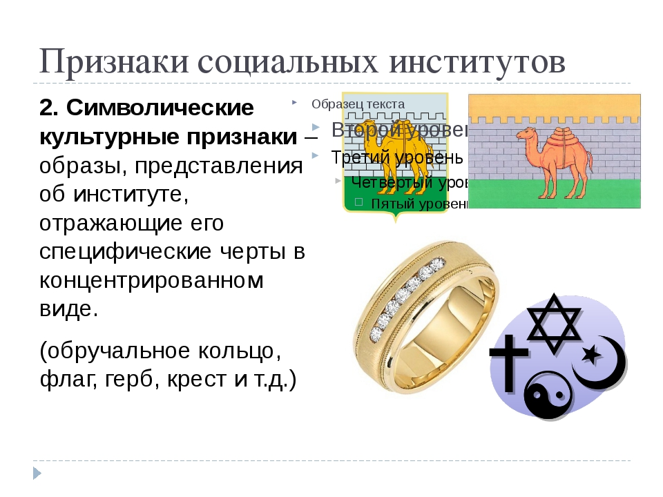 Признаки социальных институтов 2. Символические культурные признаки – образы,...