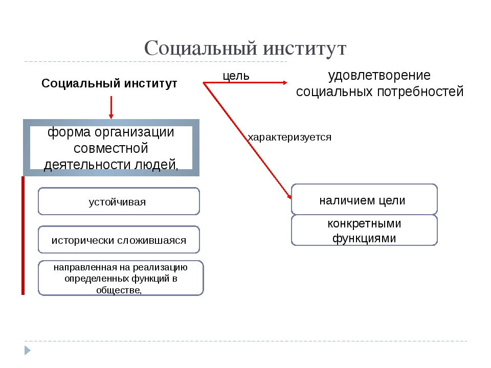 Социальный институт форма организации совместной деятельности людей, историче...