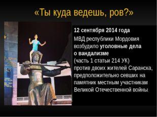 12 сентября 2014 года МВД республики Мордовия возбудило уголовные дела о ванд