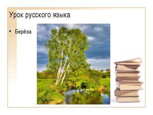 Урок русского языка Берёза (Образовательный портал «Мой университет» - www.mo
