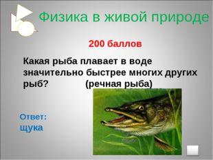 200 баллов Какая рыба плавает в воде значительно быстрее многих других рыб?