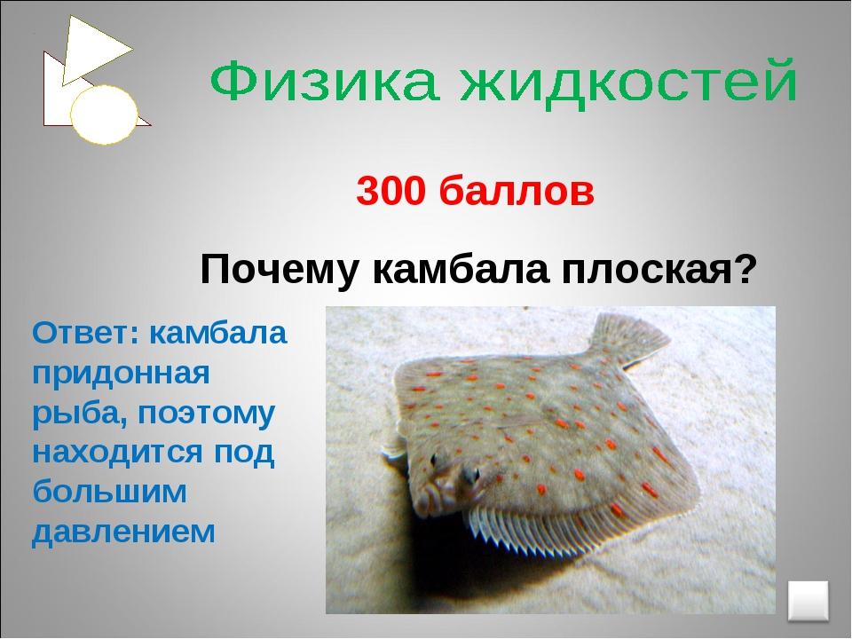 300 баллов Почему камбала плоская? Ответ: камбала придонная рыба, поэтому на...