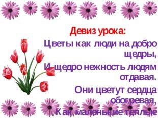 Девиз урока: Цветы как люди на добро щедры, И щедро нежность людям отдавая. О