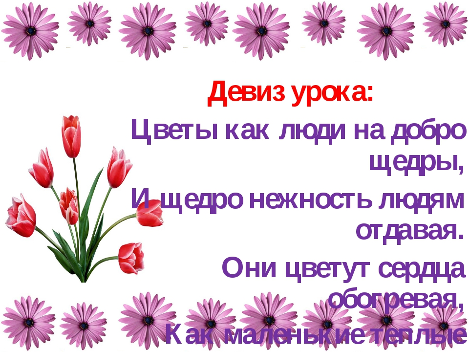 Девиз урока: Цветы как люди на добро щедры, И щедро нежность людям отдавая. О...