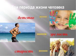 Три периода жизни человека детство зрелость старость